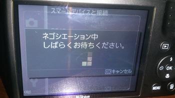s-DSC_0378.jpg